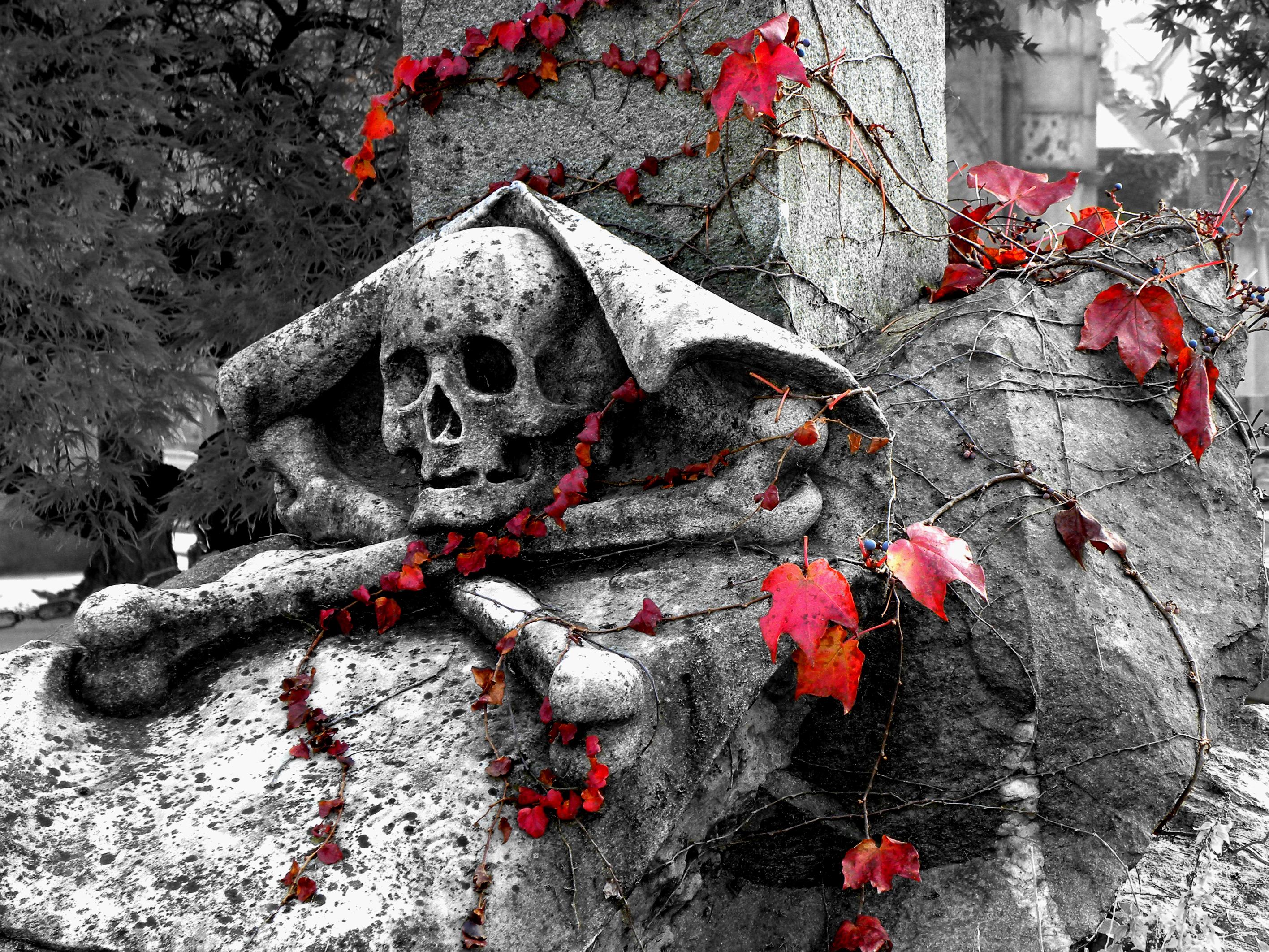 Statuie cu craniu și oase