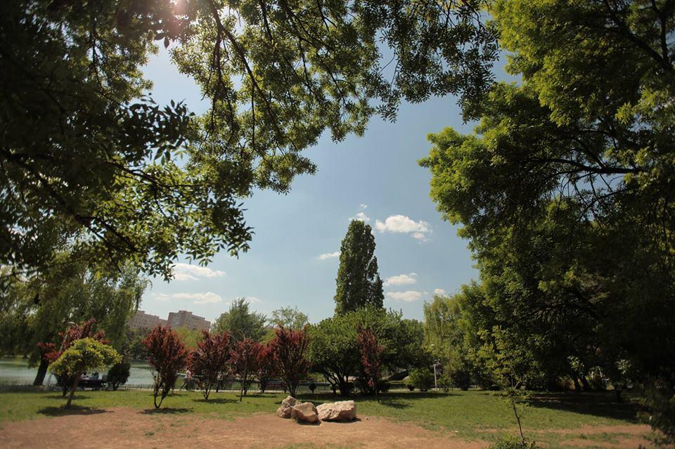 parcul-drumul-taberei