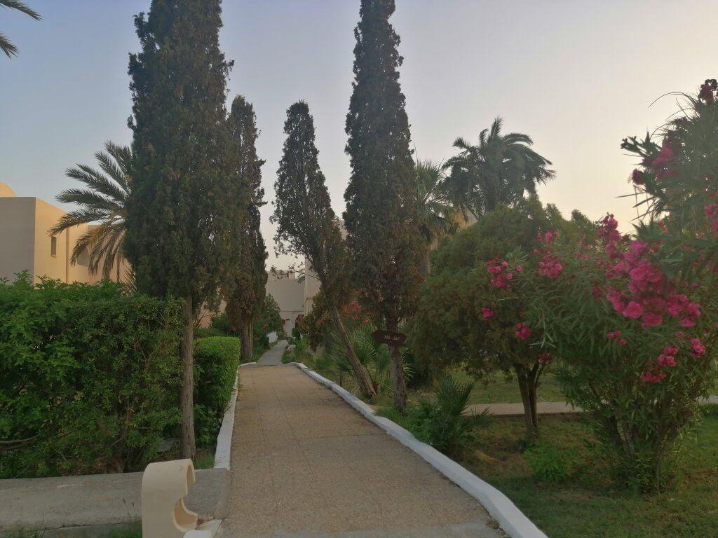 vacanța în Tunisia